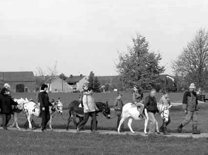 Wanderung vom Eselhof zur Waldschule (Foto: Knack)
