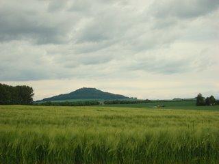 Blick von Markersdorf zur Landeskrone.
