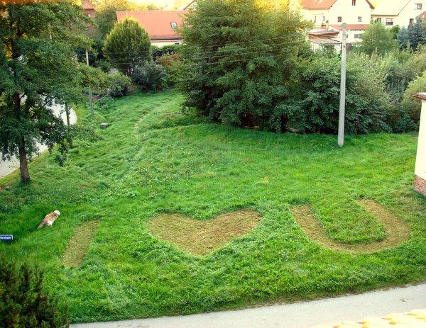 I love you - ganz in Grün.