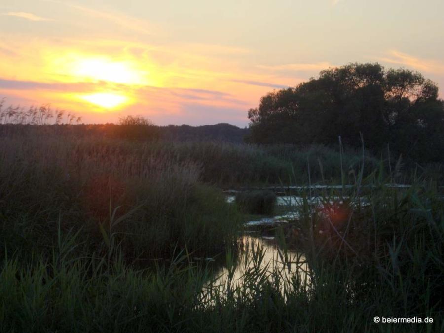 Abbildung: Sonnenuntergang in der Heide bei Rietschen.