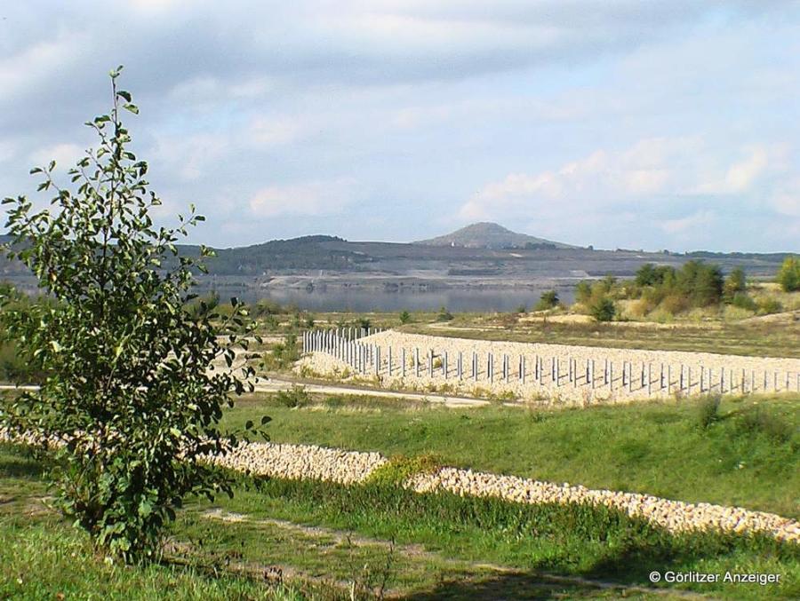 Abbildung: Blick über das noch trockene Hafenbecken des Berzdofer Sees über die Neuberzdorfer Höhe zur Landeskrone ungefähr im Jahr 2007.