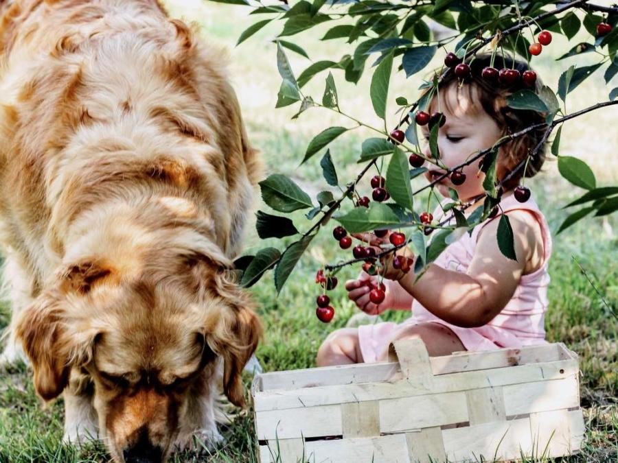 Leben mit Kindern auf dem Lande