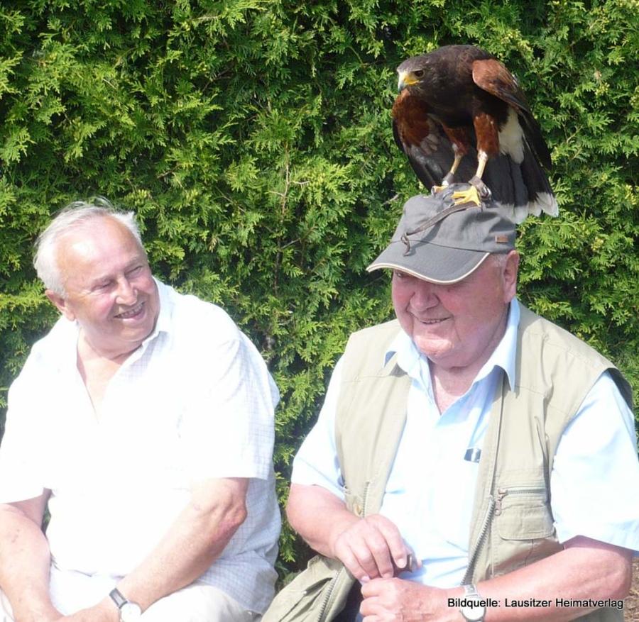 Ein paar Sekunden später saß der Adler samst Mütze auf einem Baum