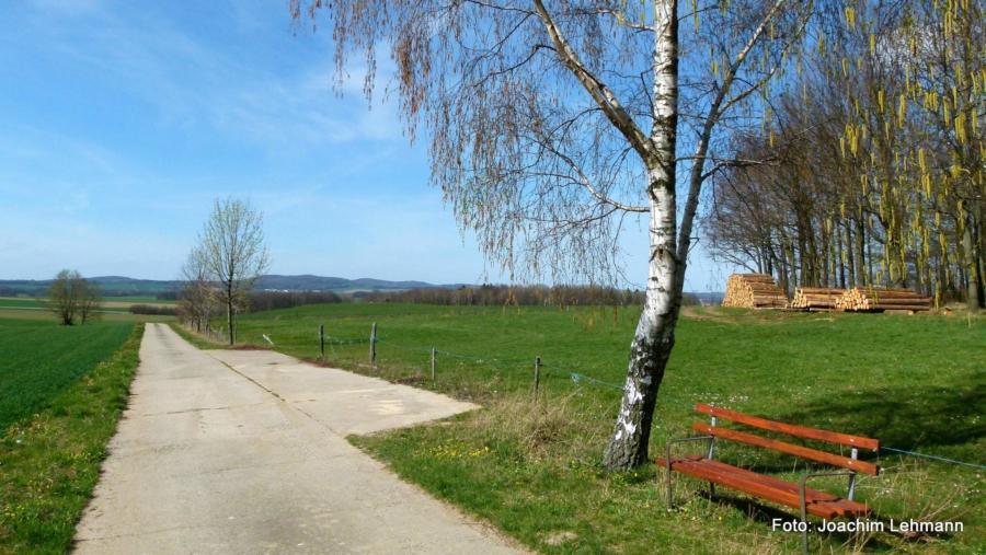 Überholte Parkbank am Nonnenweg