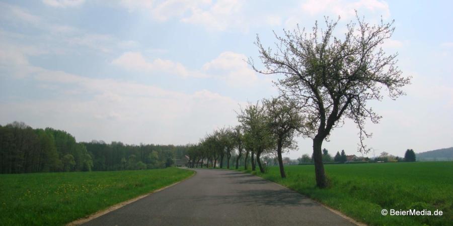 Die Gersdorfer Straße verbindet Deutsch-Paulsdorf mit der Staatsstraße S 111, die von Reichenbach/O.L. nach Görlitz-Weinhübel führt