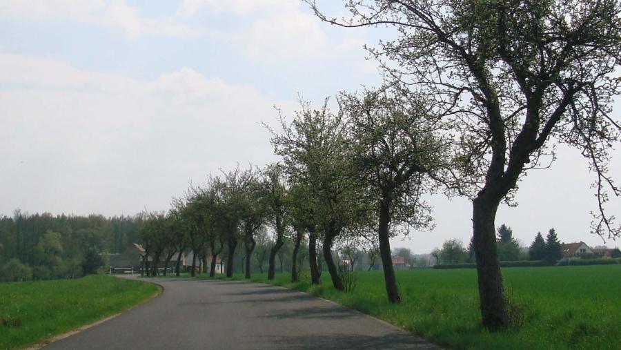 Auf der Straße nach Deutsch-Paulsdorf