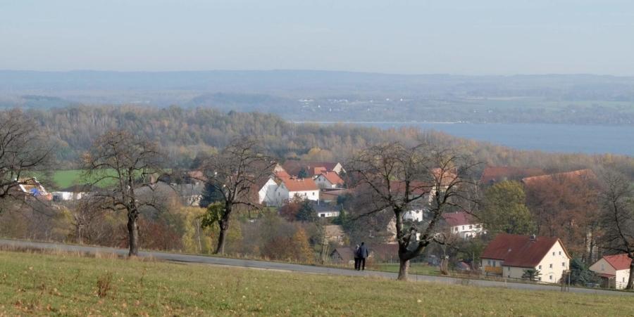 Gegen den Novemberblues hilft ein Spaziergang, etwa auf der Kirschallee in Jauernick-Buschbach