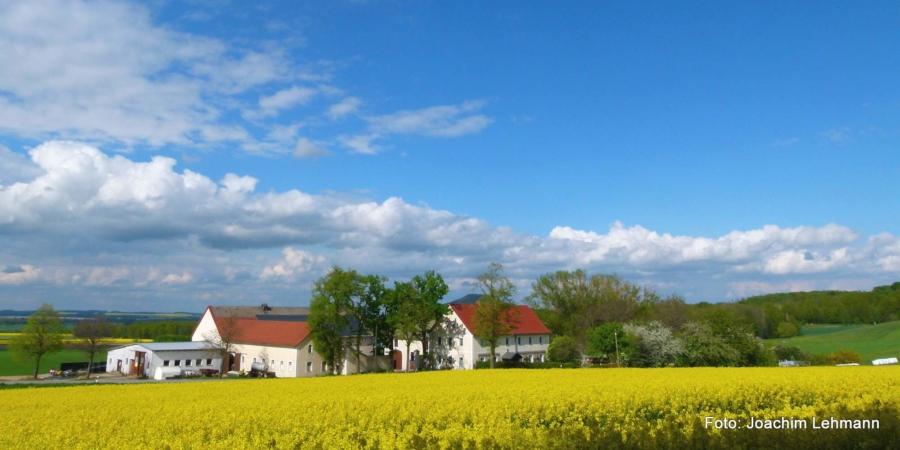 An einem Frühlingsnachmittag in Jauernick-Buschbach