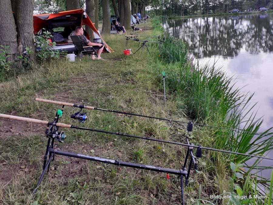 Vereinsangeln am Quolsdorfer Teich: Regenwetter kann doch einen Angler nicht erschüttern!