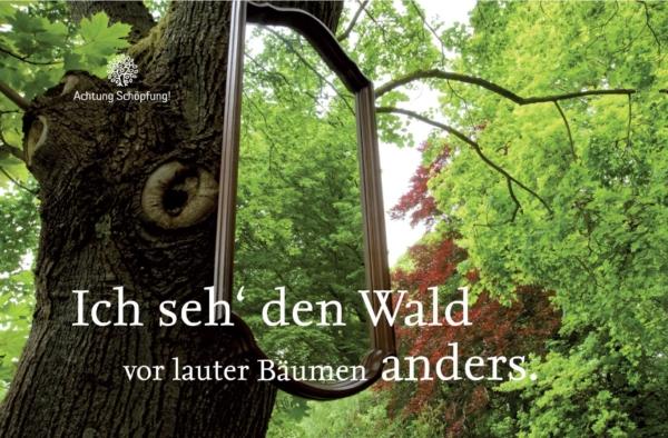 Waldseminar mit Prof. Xylander