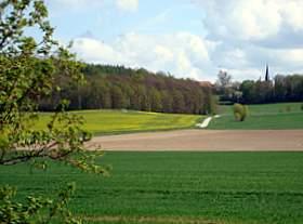 Jauernick-Buschbach