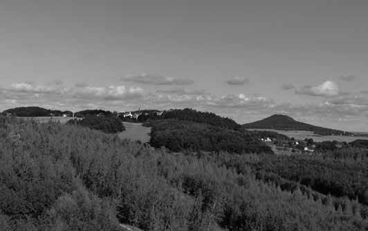 Blick vom Turm Berzdorfer Höhe auf Jauernick. Foto: Knack