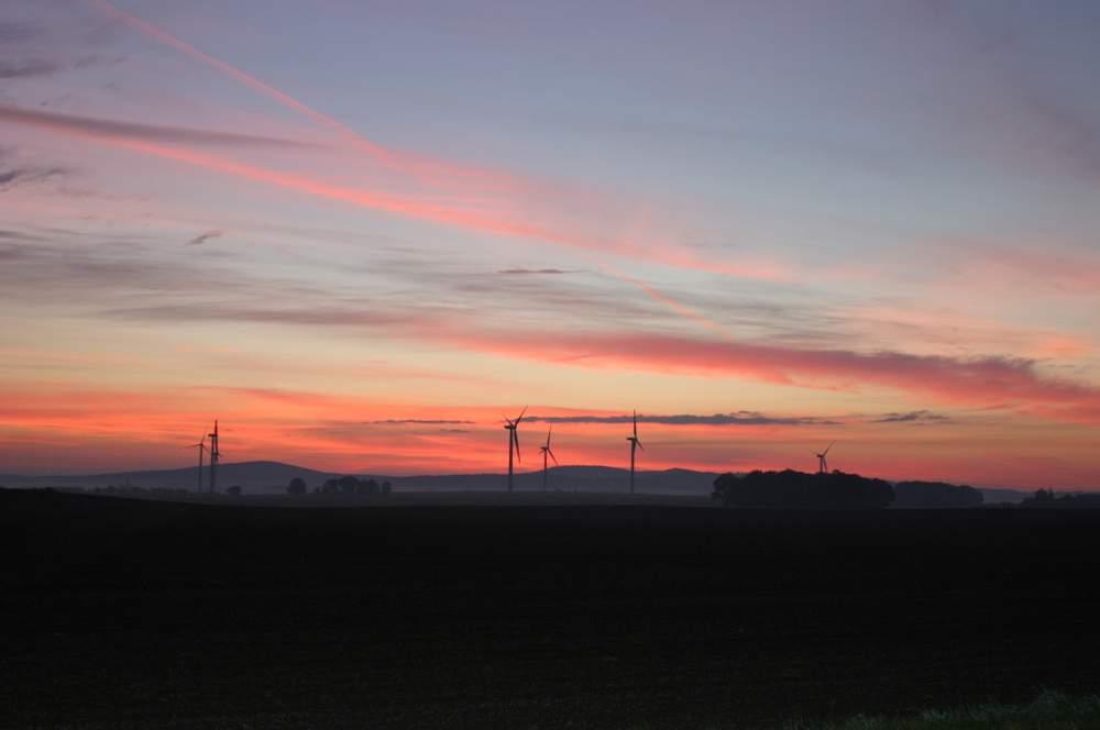 Am Horizont die Königshainer Berge, frühmorgens aus Richtung Westen (bei Rotkretscham) gesehen. Ganz oben: Blick auf die Königshainer Berge vom Monumentberg bei Groß Radisch. Fotos: BeierMedia.de