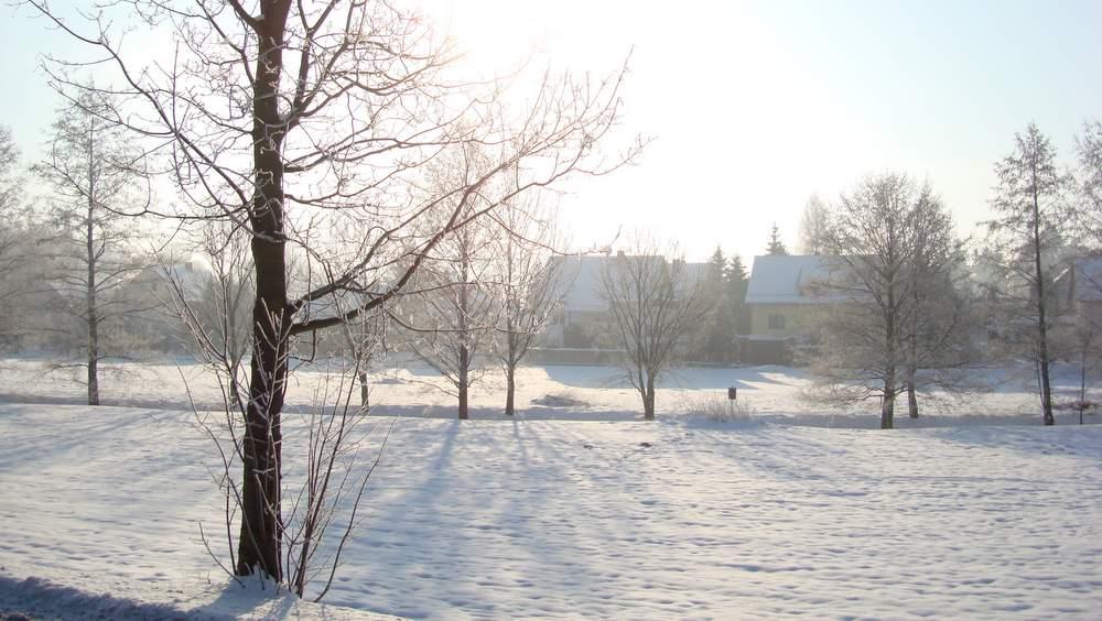 Ein frostiger Tag am Schöps im Ortsteil Holtendorf. Foto: BeierMedia.de