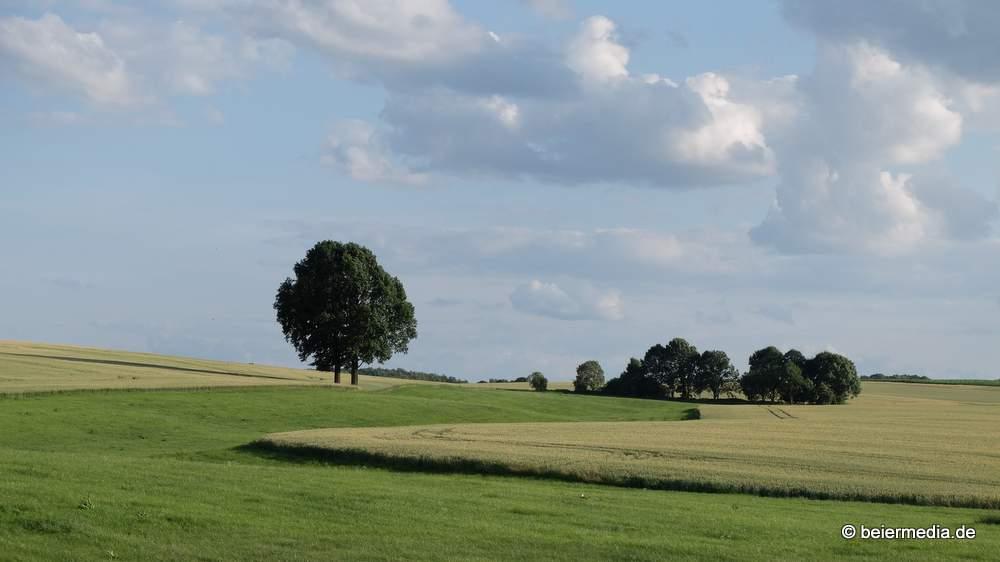 Landschaft zwischen den Ortsteilen Markersdorf und Holtendorf.