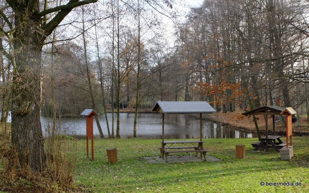 Am Spinnteich im Ortsteil Holtendorf.