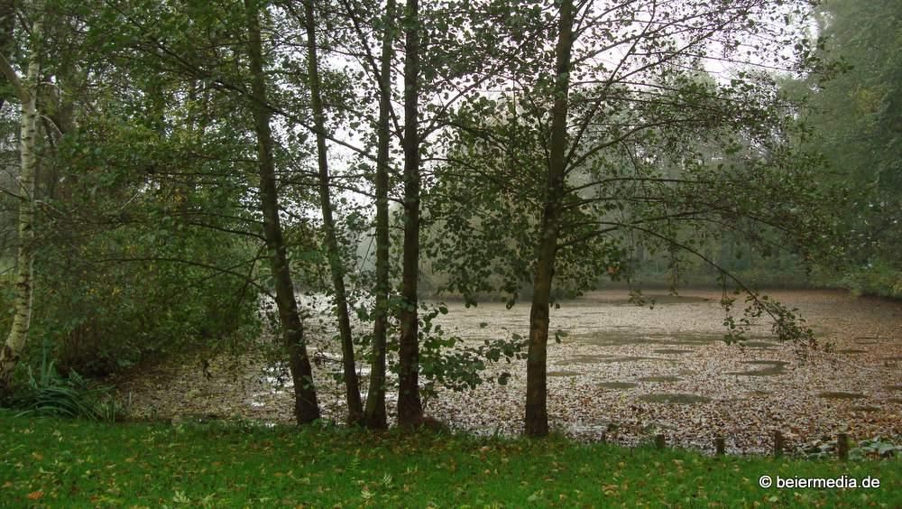 Herbststimmung am Teich in Holtendorf